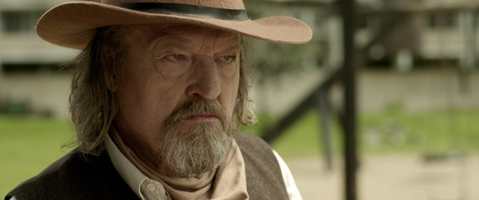 cactus-and-mimosa